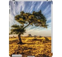 cloud of dog rocks iPad Case/Skin