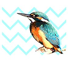 Blue Kingfisher Photographic Print