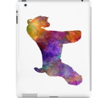 Kerry Blue Terrier 01 in watercolor iPad Case/Skin