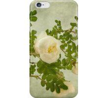White Rose of Scotland  iPhone Case/Skin