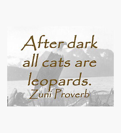 After Dark - Zuni Proverb Photographic Print
