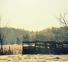 Country side by francelal