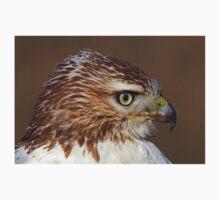 Red-tailed Hawk Portrait Kids Tee