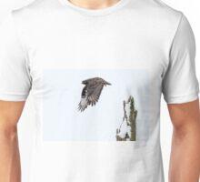 Rough-legged Hawk Unisex T-Shirt