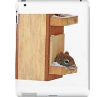 Anyplace is home when it's cold - Red Squirrel iPad Case/Skin