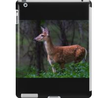 Portrait of a Fawn - White Tailed Deer iPad Case/Skin