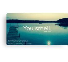 You smell. Like, a lot.  Canvas Print