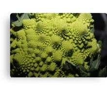 romanesco broccoli  Canvas Print
