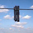 Clothespins by Debra Fedchin