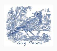 Song Thrush - Blue Baby Tee