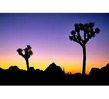Almost Night Mojave Desert Photographic Print