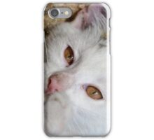 Kittens love to play iPhone Case/Skin