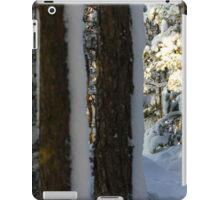 There Will Be Snow IV iPad Case/Skin