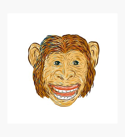 Chimpanzee Head Front Isolated Photographic Print