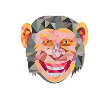 Chimpanzee Head Front Low Polygon Photographic Print