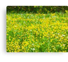 Buttercup Bokeh Canvas Print