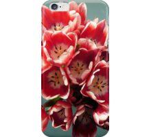 Birthday Tulips iPhone Case/Skin