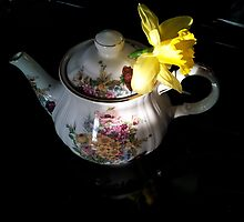 Daffodil in Teapot by norahbrink