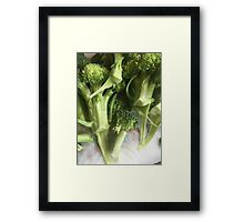 Broccoli Freckles  Framed Print