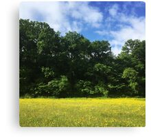 Somerset Countryside Canvas Print