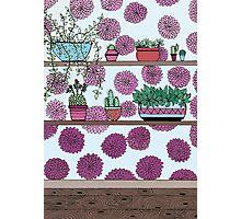 Plants versus flowers Photographic Print