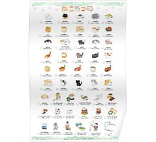 CAT COLLECTER POSTER Poster