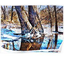 Winter Woodlands Poster