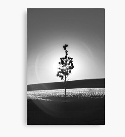Stand Tall BW Canvas Print