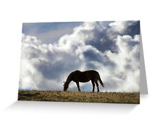 Grazing Horse with a Cloud Background Greeting Card