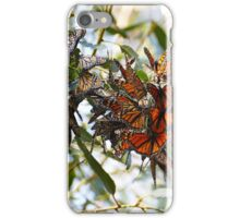 Autumn Leaves? iPhone Case/Skin