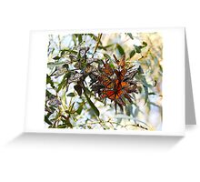 Autumn Leaves? Greeting Card