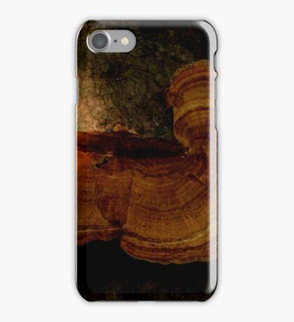 Fungi along the Gondwana Rainforest walk iPhone Case/Skin