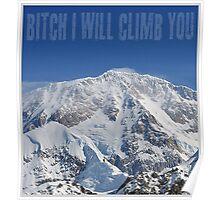Funny Music Lyrics- Bitch I Will Climb You Poster