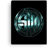 TSM Lights Canvas Print