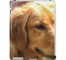 Love Golden Retrievers iPad Case/Skin