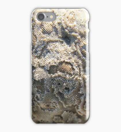 Honey comb texture on a shell - 2016 iPhone Case/Skin