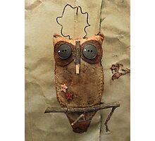 Hoot owl Photographic Print
