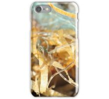 Tangled seaweed and beach trash - 2016 iPhone Case/Skin
