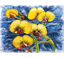 Bacon & Eggs Abstract Flower Painting Photographic Print