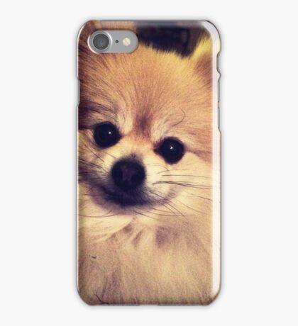 Pomeranian iPhone Case/Skin