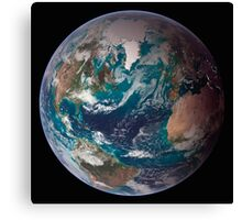 A full view of Earth showing global data for land surface, polar sea ice, and chlorophyll. Canvas Print