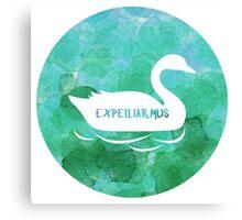 Expelliarmus - Cho Chang Canvas Print