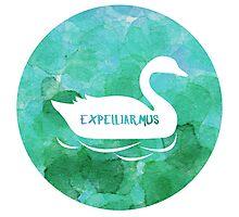 Expelliarmus - Cho Chang Photographic Print