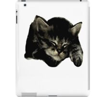 Cats and kittens iPad Case/Skin