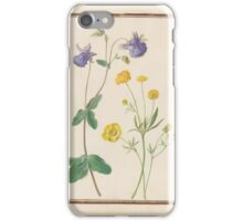 Circle of Madeleine Françoise Basseporte  Unidentified purple flower (left). Single and double buttercup (Ranunculus acris, var. flore-pleno) (right) iPhone Case/Skin