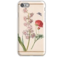 Circle of Madeleine Françoise Basseporte Double Hyacinth and Ranunculus iPhone Case/Skin