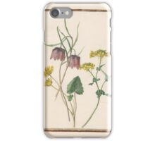 Circle of Madeleine Françoise Basseporte 1701-1780 Ciclamen (left). Checked lily (Frittilaria meleagroides) (center). Ravinelle (right).  iPhone Case/Skin