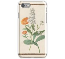 Circle of Madeleine Françoise Basseporte Calendula Double Stock  iPhone Case/Skin