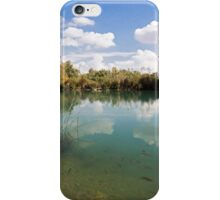 Ein Afek Nature Reserve on the Naaman River  iPhone Case/Skin