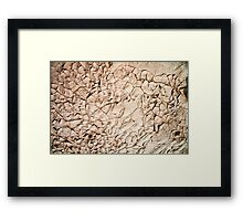 Water shortage and drought Dry cracked mud  Framed Print
